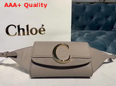 Chloe C Belt Bag in Shiny and Suede Calfskin Motty Grey Replica