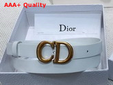 Dior Saddle Calfskin Belt in White Replica