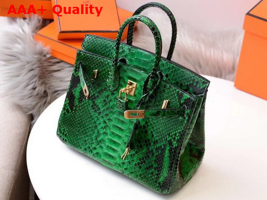 Hermes Birkin 25 Bag Green Python Replica