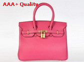 Hermes Birkin 25 Peach Gold Replica