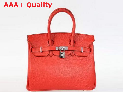 Hermes Birkin 25 in Red Togo Leather Replica