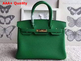 Hermes Birkin 30 in Green Togo Leather with Gold Hardware Replica