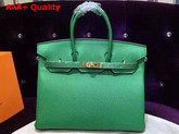 Hermes Birkin 35 Green Togo Leather Gold Hardware Replica