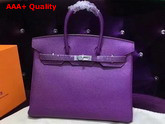 Hermes Birkin 35 Purple Togo Leather Silver Hardware Replica