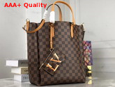Louis Vuitton Belmont MM Damier Coated Canvas and Safran Smooth Cowhide Trim Replica