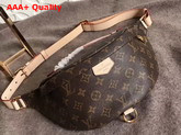 Louis Vuitton Bumbag Monogram Coated Canvas and Natural Cowhide Leather M43644 Replica