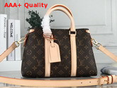 Louis Vuitton Soufflot BB Monogram Coated Canvas and Smooth Cowhide Leather Trim M44815 Replica